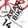 14 Aran Bike